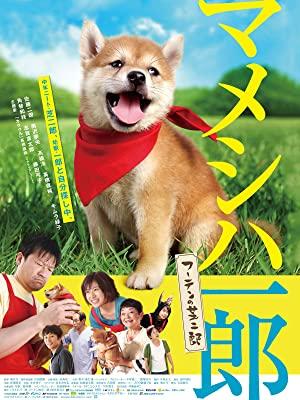 映画版マメシバ一郎 フーテンの芝二郎